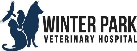 Veterinarians serving Orlando and Winter Park FL
