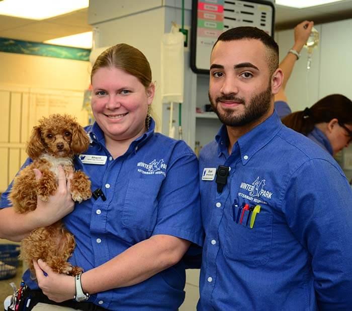 Winter Park Animal Hospital of Florida