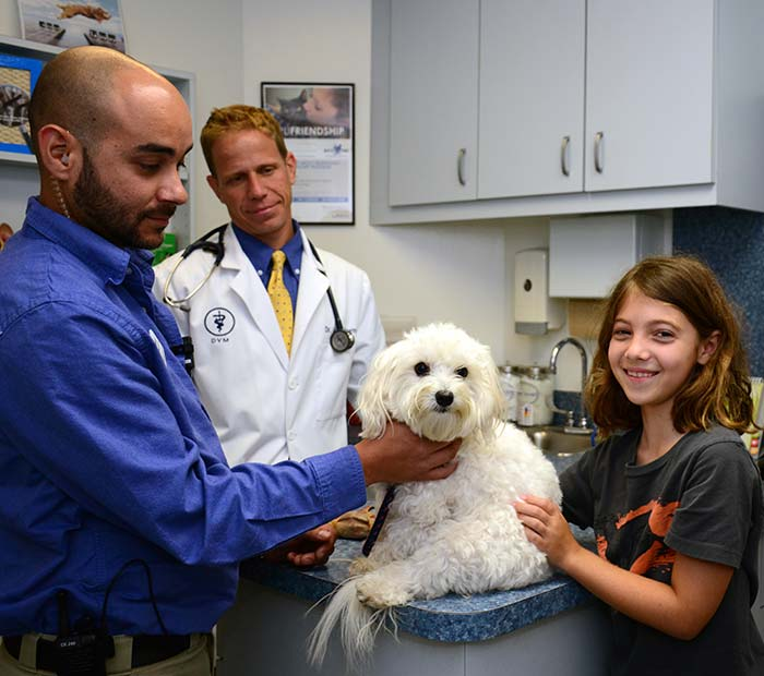 Puppy Veterinarian in Winter Park Florida