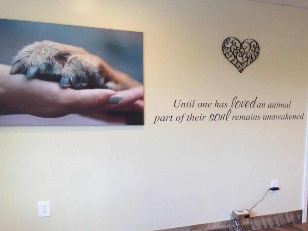 vet dating a client