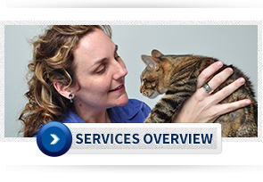 Winter Park Veterinary Services