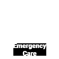 emergency-veterinary-care-2