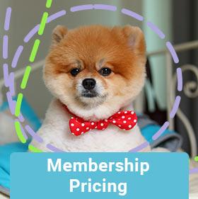 membership-pricing