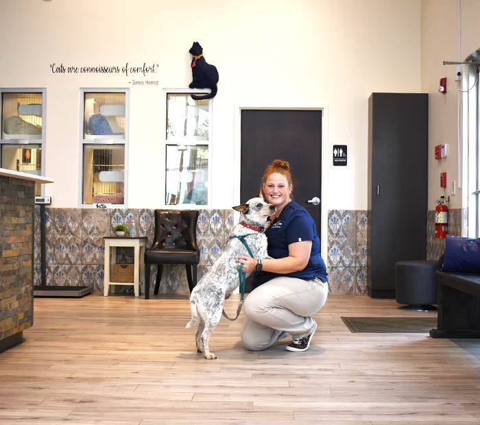 pet-owner-resources